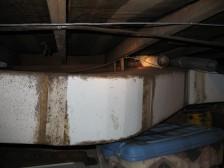 Mold on asbestos