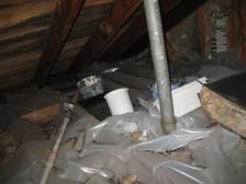 attic plastic