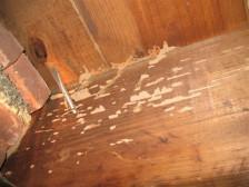 Ace Home Inspection Inc 187 Portfolio