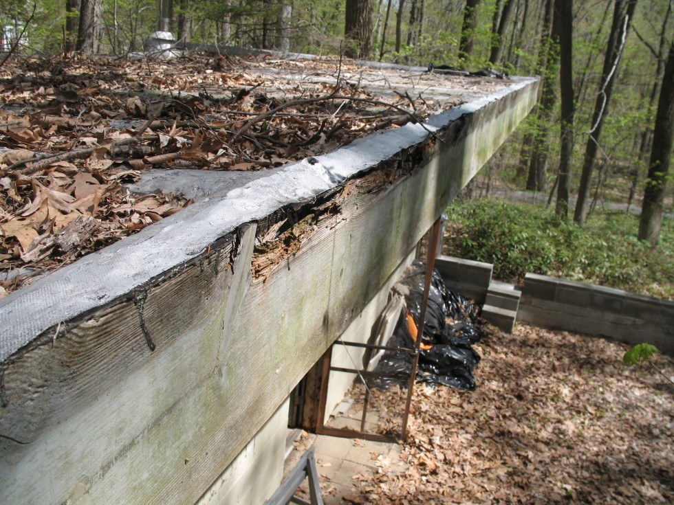 Rotted roof sheating, sagging between rafters