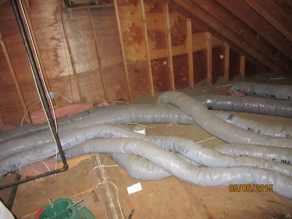 Ace Home Inspection Inc 187 Snakes In Attic